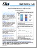 Microbusinesses in the Economy