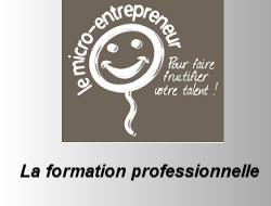 Micro entrepreneur et la formation professionnelle