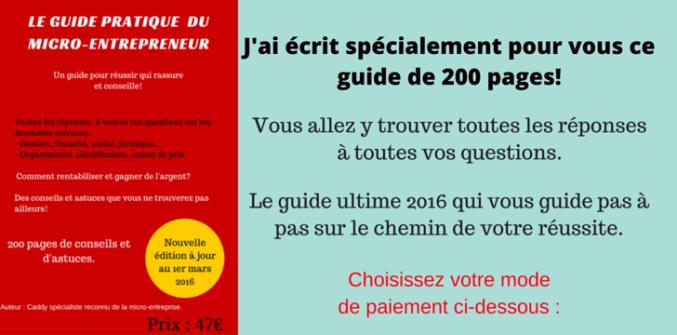 bannière guide 2016(1)