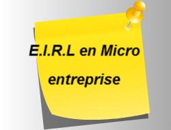 EIRL et micro entrepreneur.