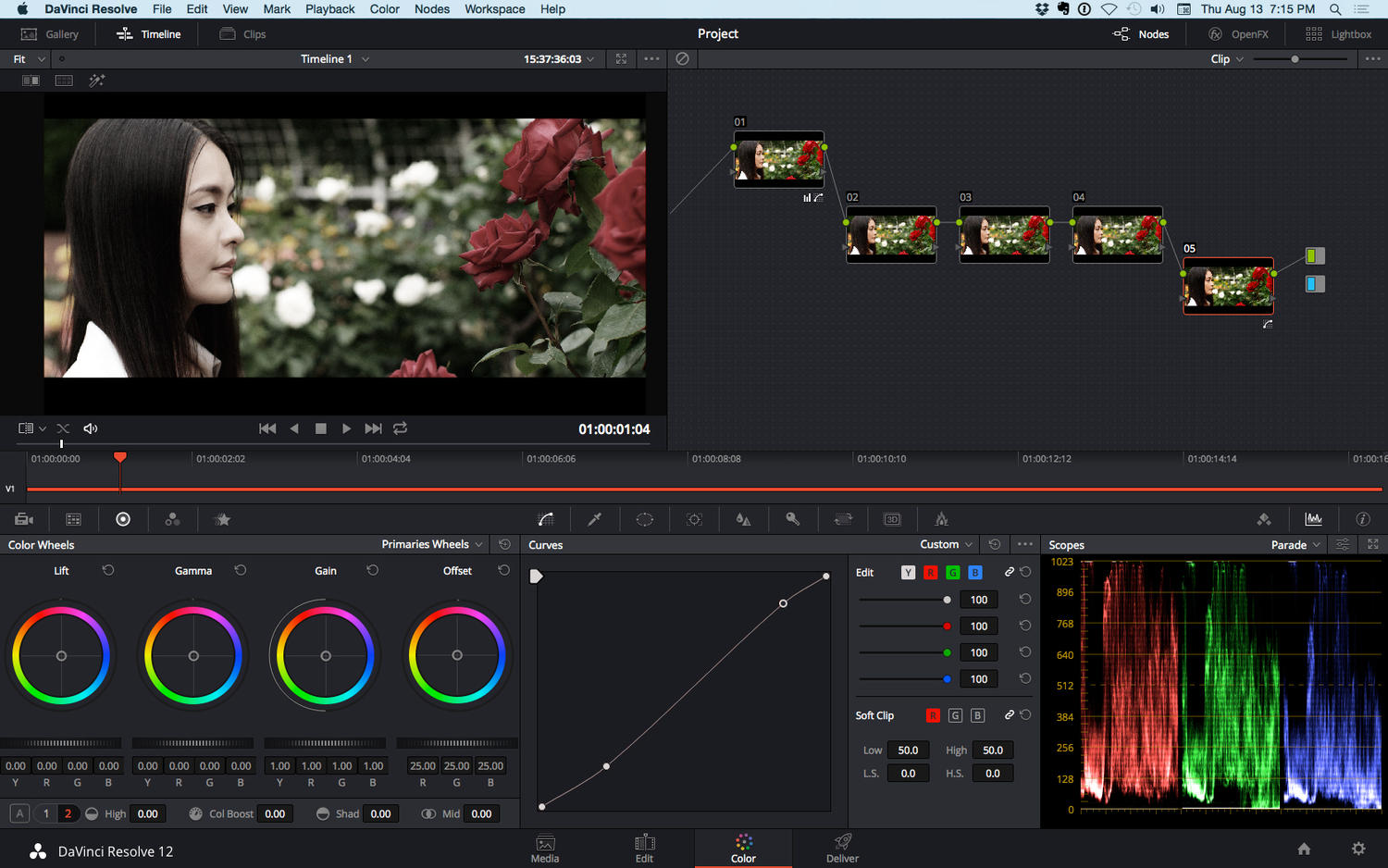 Professional Video Color Grading By GuidoDesign On Envato