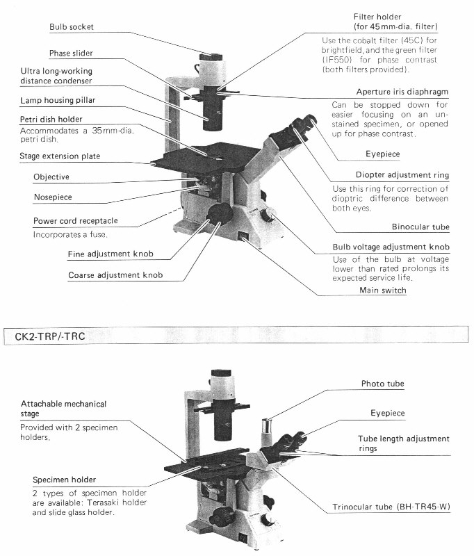 Definitions of the parts of the microscope