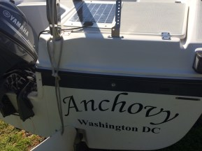 The Anchovy, with new 10HP Yamaha outboard