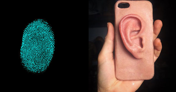 Telugu news EARS be the new fingerprints Scientists say ear recognition could.