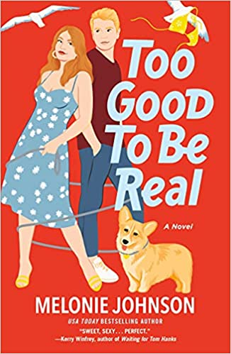 Too good to Be Real Book Cover