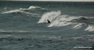 Surfing in Grand Haven(Not me, I was stuck taking pictures waiting for the wind!)