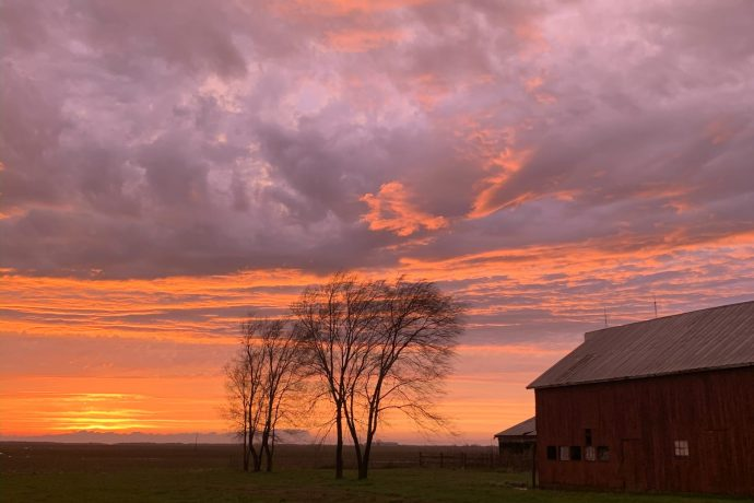 This Week at the Farm 11: Get Outside