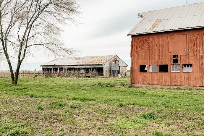 This Week at the Farm 12: Property Cleanup
