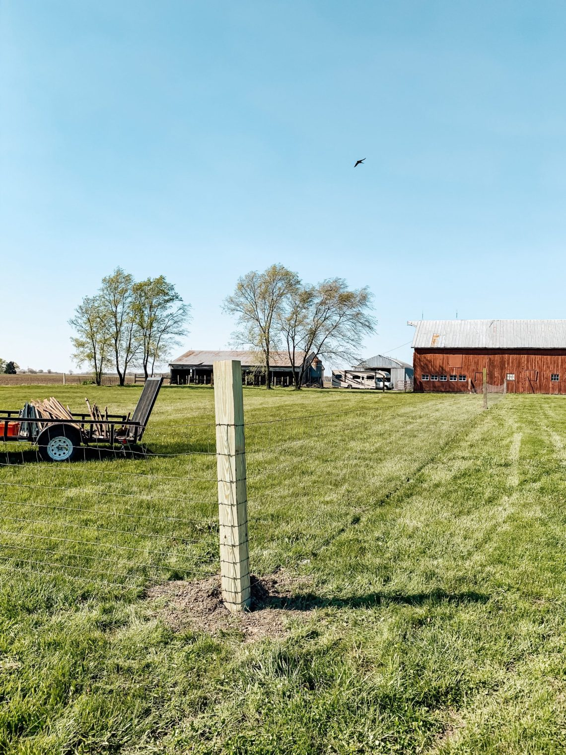 We're getting closer and closer to those farm babies being here! Eeek!! So excited!! We got our diy wire and t-post pasture fencing done!