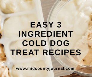 Easy Cold Homemade Dog Treats