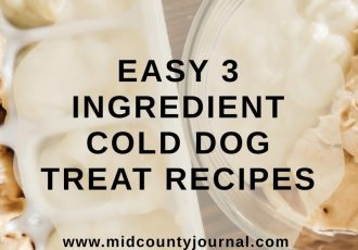 Easy Cold Homemade Dog Treats