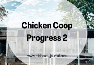 Chicken Coop Progress Update 2