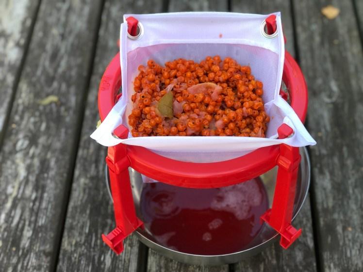Gelén görs på saften från rönnbär