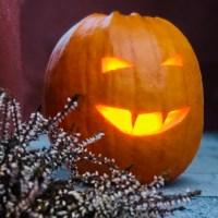 Våra bästa tips på att ta tillvara din Halloweenpumpa