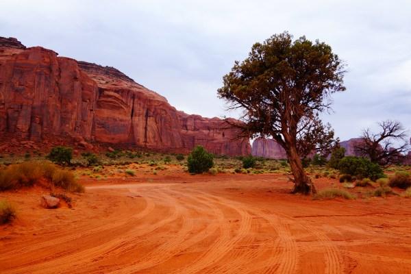 desert adventures part 1 midday