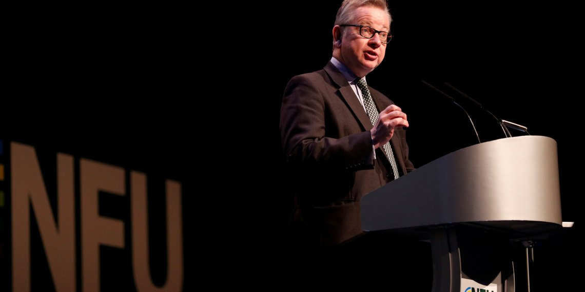 FILE PHOTO: Michael Gove the Secretary of State for Environment, Food and Rural Affairs speaks during the National Farmers Union annual conference in Birmingham, Britain February 20, 2018. REUTERS/Darren Staples/File Photo