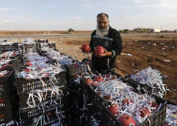 Syrian vendor Abu Alaa waits for Jordanian customers to sell them pomegranate at the recently reopened Nassib border post in the Daraa province,at the Syrian-Jordanian border south of Damascus on November 7, 2018. (AFP)