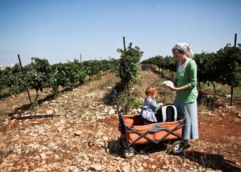 FILE PHOTO: A Christian volunteer stands with her child in a vineyard during grape harvest in the West Bank Jewish settlement of Har Bracha, near Nablus September 3, 2013. REUTERS/Nir Elias/