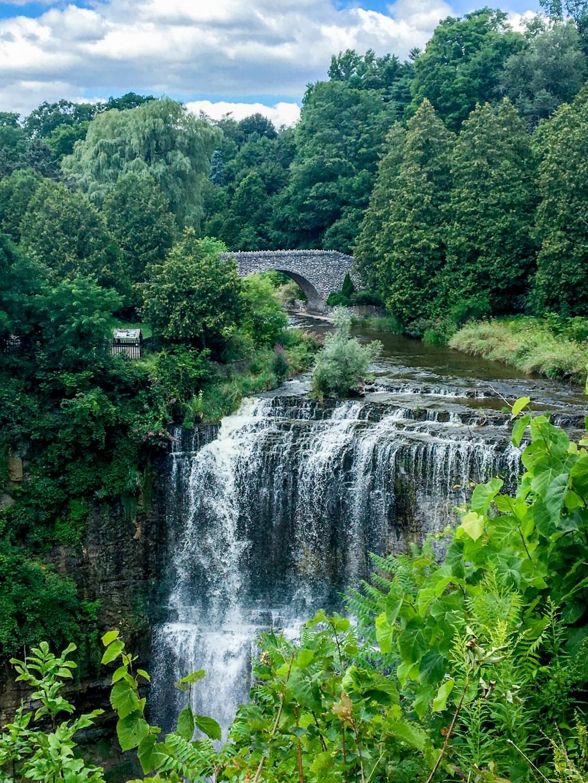 Hamilton's Webster Falls
