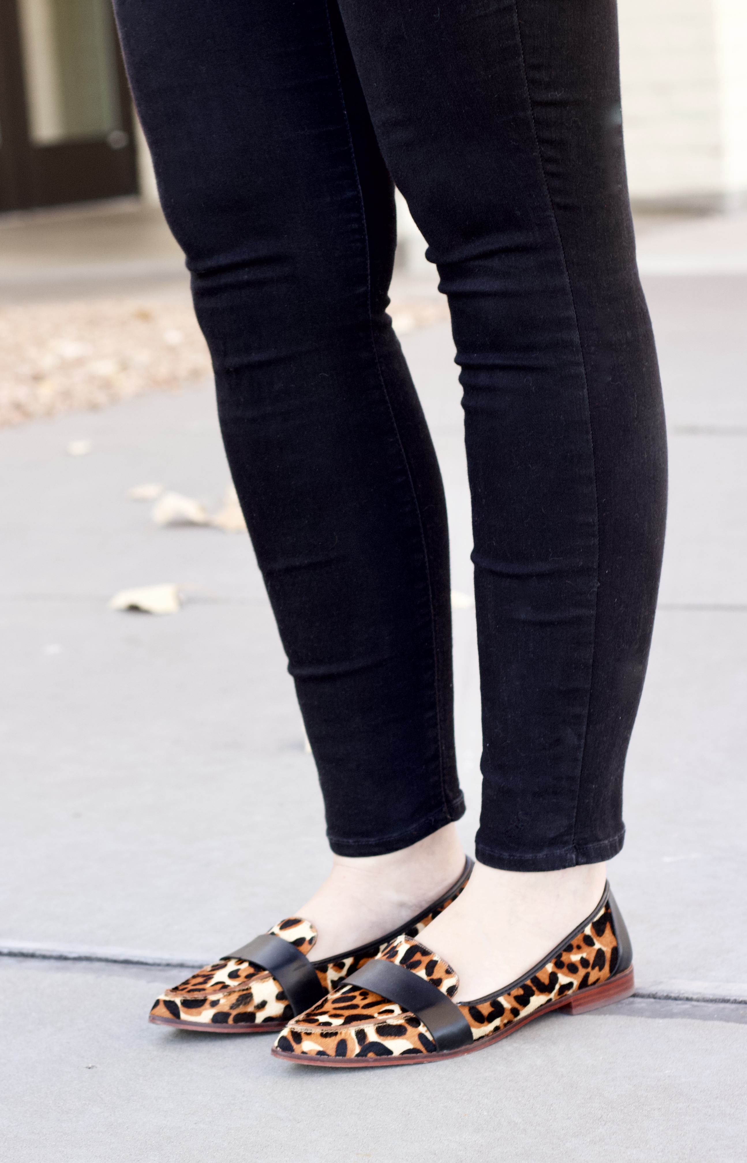 sole society leopard loafers
