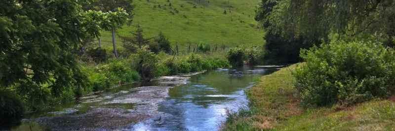 Mossy Creek - 9x3b