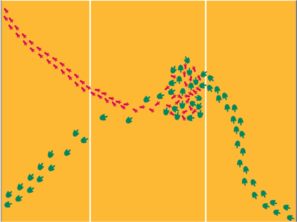 medium resolution of Mystery Footprints – Observation vs. Inference – Middle School Science Blog