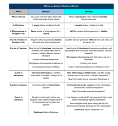 Meiosis \u0026 DNA Cheat Sheets – Free – Middle School Science Blog [ 1014 x 796 Pixel ]