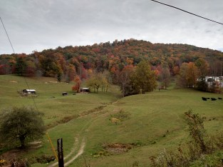 Oct 2015 - fall color across street