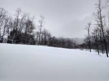 Jan 2016 - Snow04