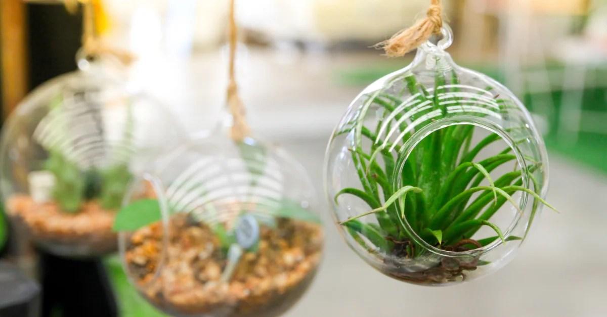 4 ideas para decorar un jardn pequeo y que te quede perfecto