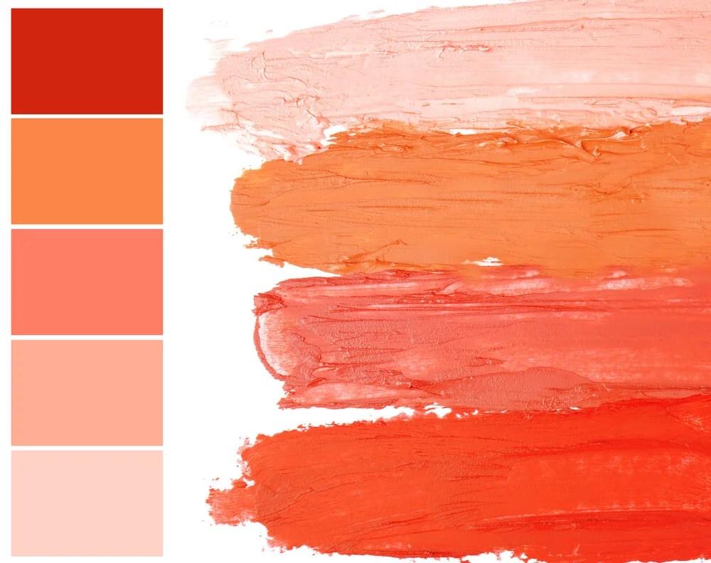 El color salmn calidez y elegancia