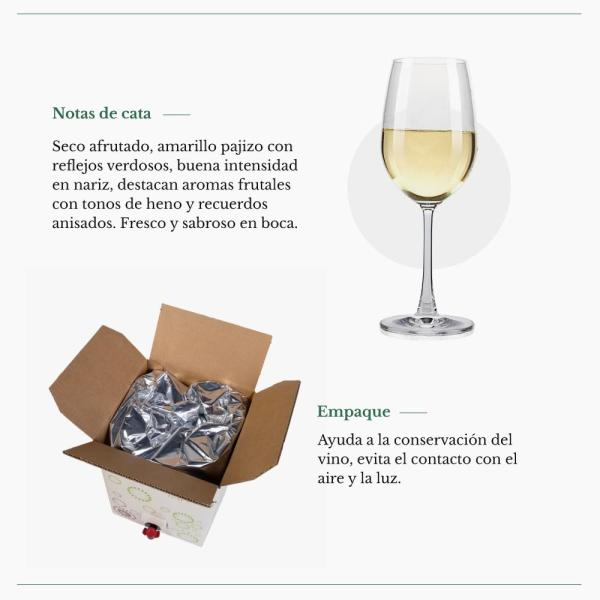 Bag in Box 15L Vino Blanco Verdejo Paz VI