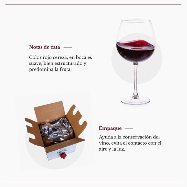 Bag in Box 5L vino tinto recomendado
