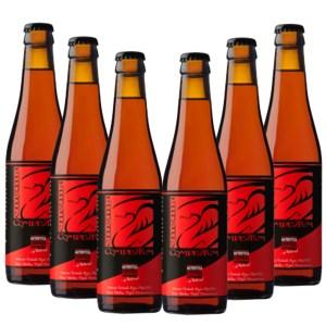 6 Cerveza artesana Enigma Complutum