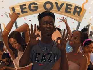 Mr Eazi – Leg Over