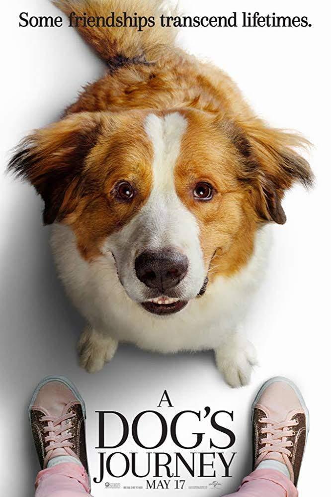 A Dog's Journey (2019) - Hollywood Movie