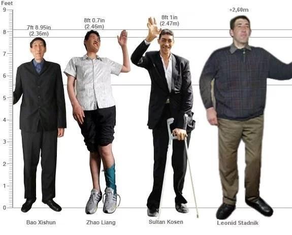 Fotos, Curiosidades, Comunicação, Jornalismo, Marketing, Propaganda, Mídia Interessante gigante-2 A Vida do homem mais alto do mundo Cotidiano Curiosidades