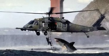 shark helicopter fake picture - O Cérebro…