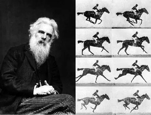 Eadweard Muybridge horse post - Google faz homenagem a Eadweard Muybridge