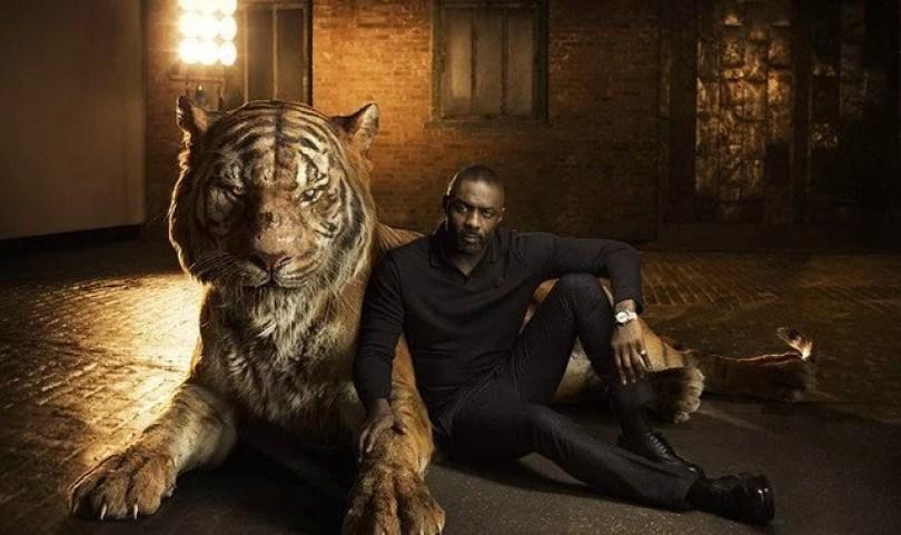 """lion king6 - Disney e o futuro remake  de """"O Rei Leão"""" na vida real"""