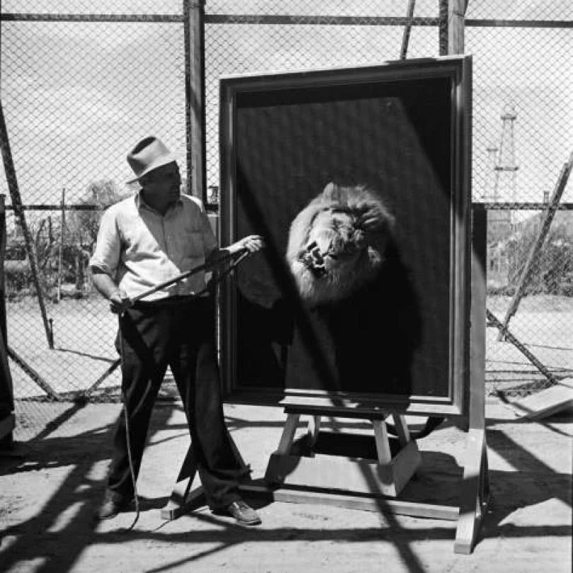 leaomgm6 - Como foi tirada a foto do leão da MGM?