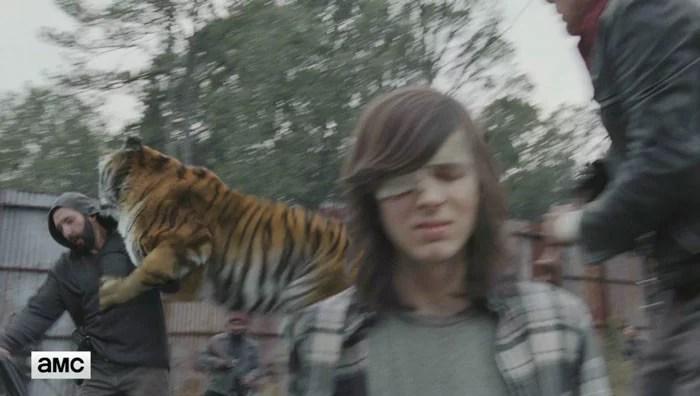 cena do Tigre
