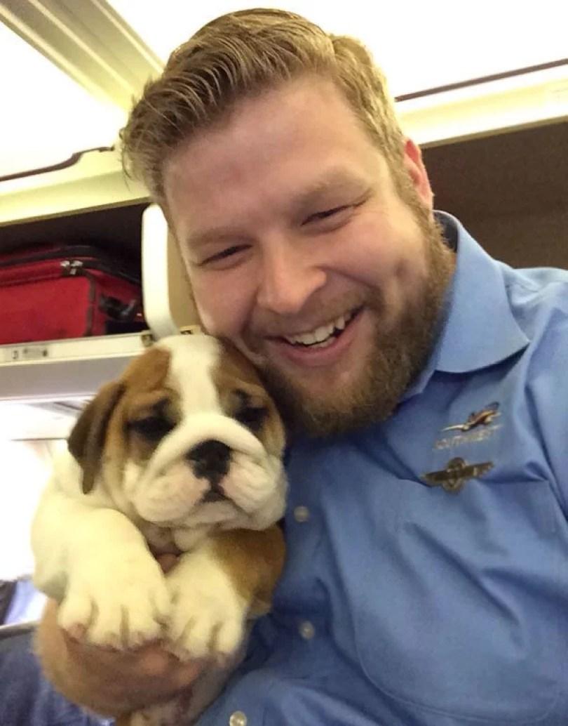 animais em voo permitido avião 12 - Afinal, é permitido animais em voos dentro do avião?