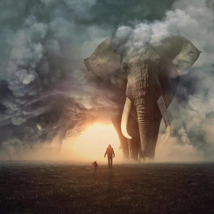 animals gigants 01 - Photoshop: Imagine um mundo com animais gigantes