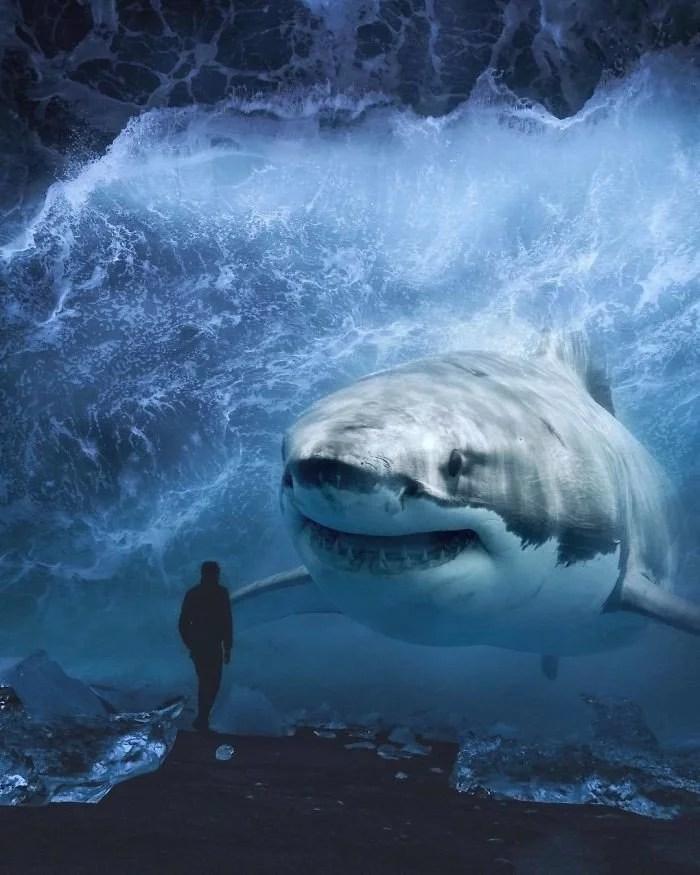 animals gigants 15 - Photoshop: Imagine um mundo com animais gigantes