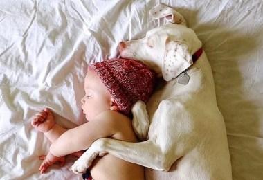 bebe e o cachorrinho - O melhor amigo do homem