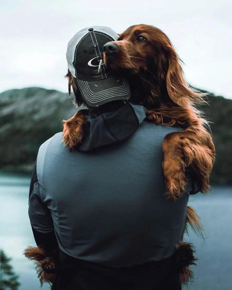 foto de cachorro 8 - Foto de cachorro: Dono faz book fotográfico de seu cão