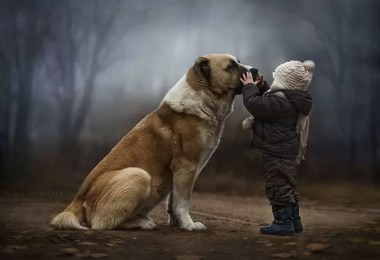 russian mom photographs kids farm 2 - Fotos de conto de fadas da russa Elena Shumilova