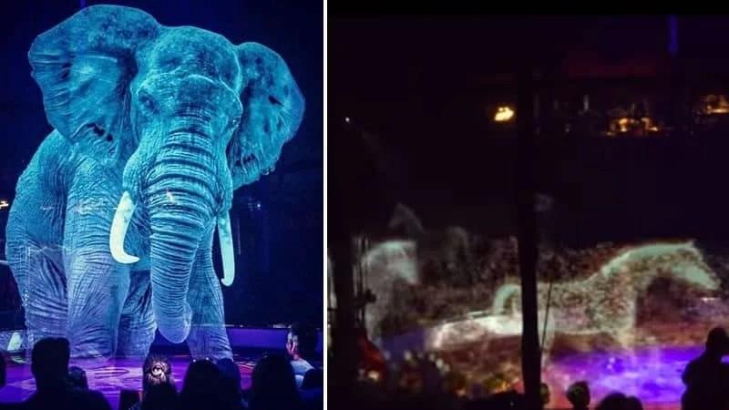 Circo Roncalli circo com animais em holograma 800x450 - Circo alemão usa hologramas em vez de animais vivos
