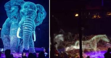 Circo Roncalli circo com animais em holograma 800x450 - Você Sabia? Vitrines na Somália tem que ter desenhos
